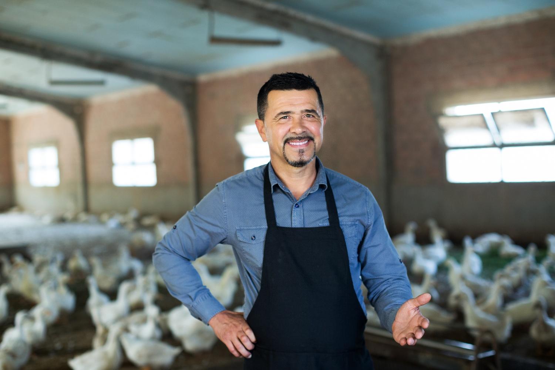 Poultry & Egg On-Farm Investment Program